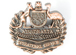 Operational Service Badge Civil